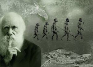 Darwin-Wallpaper
