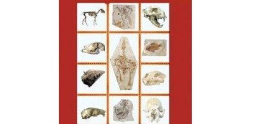 چالشهای پیش روی نظریه تکامل