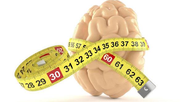 آیا اندازه مغز در میزان بهره هوشی تاثیر گذار است ؟