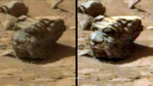 mars-shapes (21)