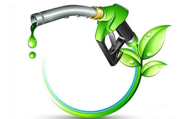 تولید سوخت جت از یک گیاه روغنی