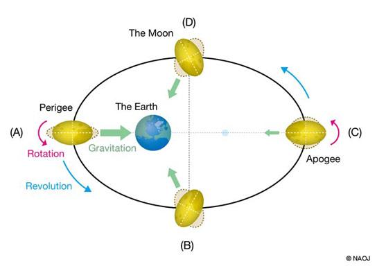 moon-core (5)