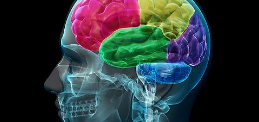 در طول اُرگاسم در مغز چه اتفاقي ميافتد؟