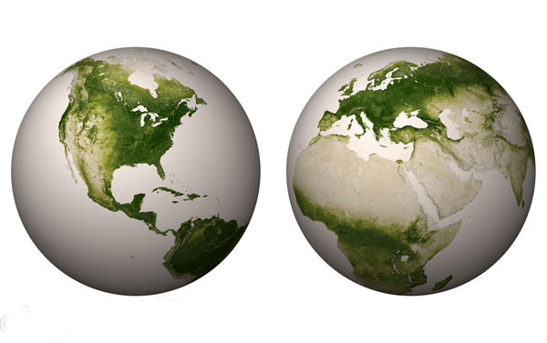 نقشه پوشش گیاهای کره زمین