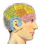 ویژگیهای مردانه را بشناسید