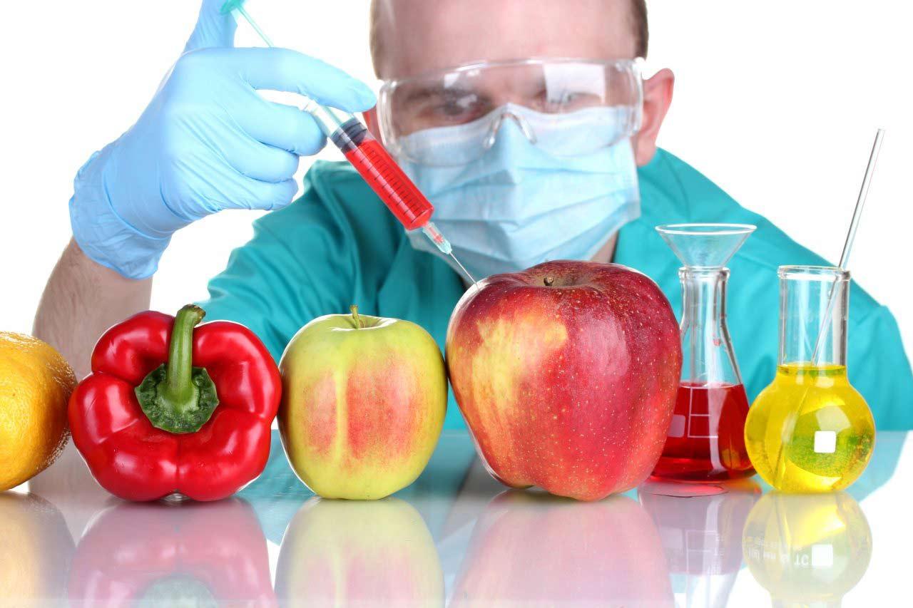 مواد غذایی GMO