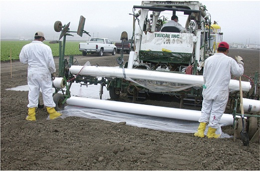 ضد عفونی خاک