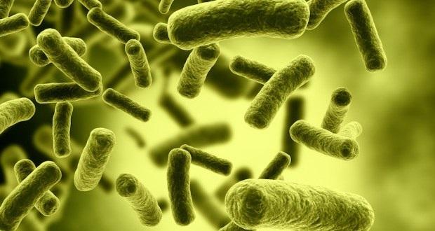 باکتری کشنده