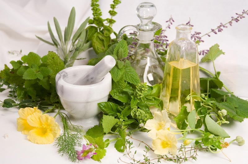 herbs-for-hair-growth