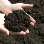تعیین رطوبت خاک