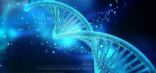 ژن مؤثر بر میزان هوش افراد