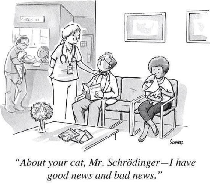 گربهی شرودینگر