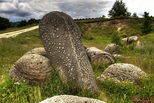 grown-stone (6)