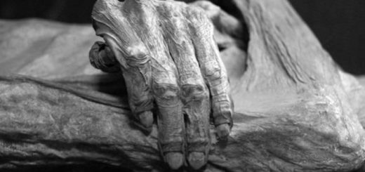 پس از مرگ چه اتفاقی برای بدن انسان میافتد؟