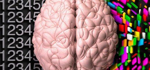 سخنراني با هر دو نيمكره مغز