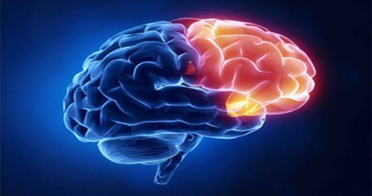 سخنرانی با هر دو نیمکره مغز