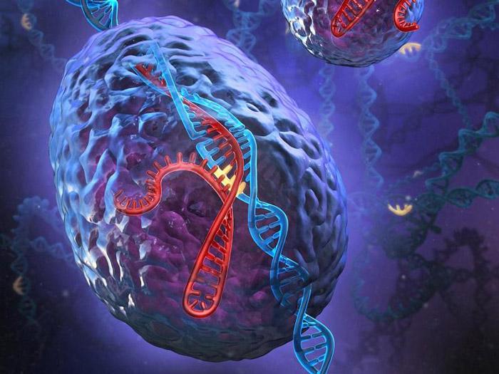 ژن های سرطانی