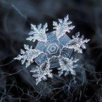معمای قدیمی دانه های برف