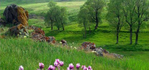 سفر به شهرستان سراب