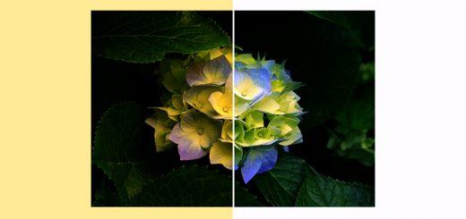 مشکل زرد نشان دادن تصاویر در ویندوز ۷ و ۸
