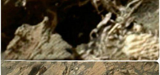 کشف اسکلت در مریخ