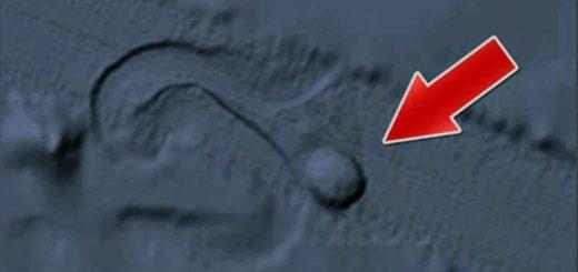 شی مدور در حال حرکت در دریای بالتیک