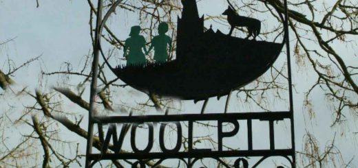 بچه های وول پیت