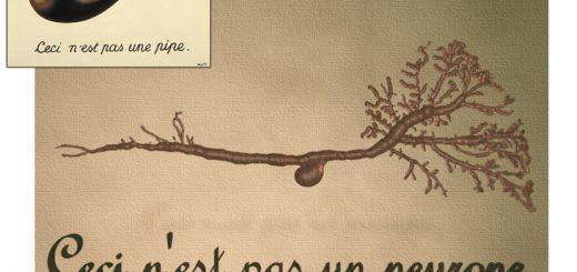 """رنه مگریت، نقاش سورئالیست بلژیکی، در نقاشی مشهور «این یک پیپ نیست» (کادر کوچک)، در حالی تصویر یک پیپ را ترسیم کرده که به بیننده گوشزد میکند این نه یک پیپ حقیقی، بلکه «نقاشی» یک پیپ است. در سال 2008 میلادی نیز هرمان کونتز و همکارانش از یونیورسیتیکالج لندن، تصویری سهبعدی از یک سلول مغزی (نورون)، تهیه کرده و در زیر آن، به همان خط و زبان بلژیکی مگریت، نوشتند: """"این یک نورون نیست"""". کونتز در توضیح این تصویر مینویسد: """"ما در اینجا به تأسی از مگریت، نشان دادهایم که با بازسازی ساختمان یک نورون، چیزی را ساختهایم که یک نورون نیست: بلکه مدل یک نورون است"""". به عبارت دیگر، عبارت """"یک نورون"""" اصلاً ارجاعی به «حقیقت» نمیدهد؛ چراکه مؤلفههای ضمنی پنهانی در تفکیک «یک نورون» از کلّیت هستی یک موجود زندهْ دخیلاند که در پژوهش علمی، غالباً مدنظر قرار گرفته نمیشوند. انقلاب کوانتومی اوایل سده بیستم میلادی هم مشخص ساخت اگر حتی شکلی متشکل از تکتک اتمهای سازنده جهان را هم ایجاد کنیم، باز بایستی در زیر آن نوشت: """"این جهان نیست"""""""