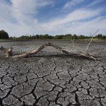 خشکسالی جهانی