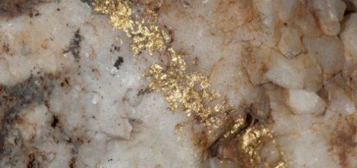 رگههای طلا