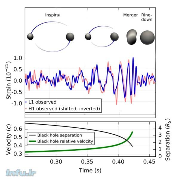 سیگنال دریافتی در آشکارسازهای دوقلوی LIGO، واقع در هانفورد واشنگتن (آبیرنگ)، و لیوینگستون لوئیزیانا (قرمزرنگ)، بر حسب شبیهسازیای از وضعیت دو سیاهچاله در جریان برخورد. نمودار پایین، آهنگ افزایش سرعت نسبی دو سیاهچاله (بر حسب سرعت نور) حین نزدیک شدن به یکدیگر، و همچنین کاهش فاصلهشان (بر حسب قطر خورشید) را نشان میدهد. بیشترین انرژی گسیلی از این رخداد، در کسری از ثانیه پیش از برخورد دو سیاهچاله ایجاد شد.