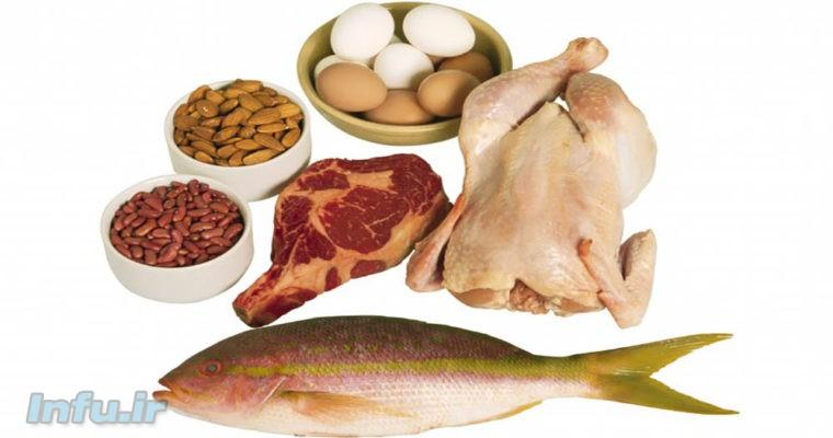 غذاهای دارای منبع حیوانی