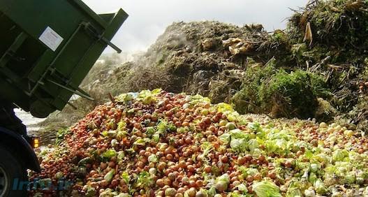 در حالی که میلیونها نفر با گرسنگی و سوء تغذیه مواجه هستند، بخش زیادی از غذا در جهان به هدر میرود