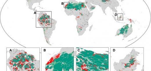نمودار شماره دو- میزان خسارت بهطور خاص در آمازون و آفریقای مرکزی بسیار بالا بودهاست
