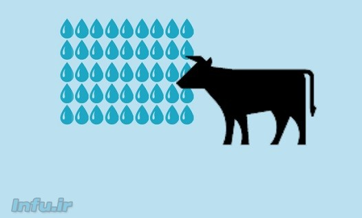 میانگین جهانی مصرف آب برای تولید یک کیلوگرم گوشت گاو ۱۵۴۰۰ لیتر است