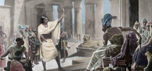 یوسف مصر