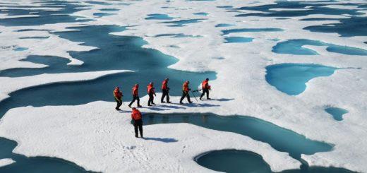 شمالگان منطقهای پیرامون قطب شمال است که بخشهایی از روسیه، آلاسکا، کانادا، گرینلند و یا اقیانوس منجمد شمالی را دربر میگیرد