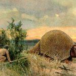 نقاشی از هاینریش هاردر