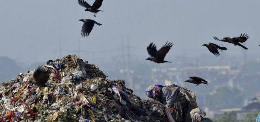 پلاستیک سازگار با محیط زیست