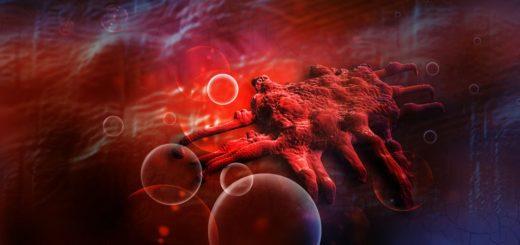 سلولهای سرطانی معده