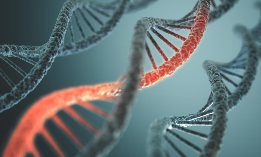 ارتباط ژنتیک و سرطان هر روز بیش از پیش مورد توجه قرار میگبرد