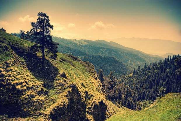 جاهای دیدنی گرجستان,پارک ملی