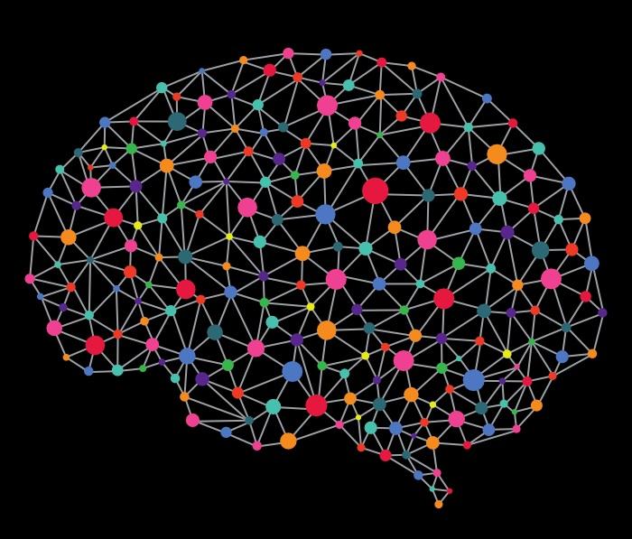 شبکه های عصبی مغزی