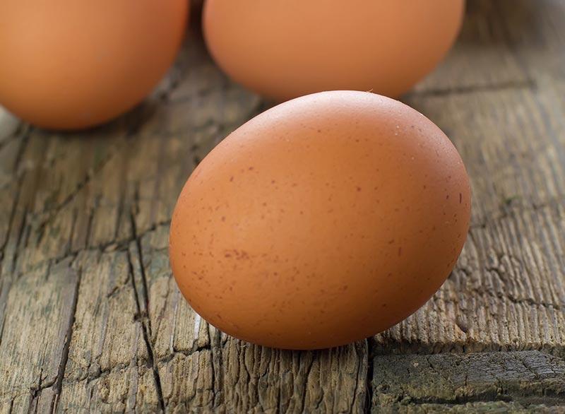 رژیم غذایی شکم شش تکه,غذاهای چربی سوز سریع,eggs-11-foods-end-bad-moods تخم مرغ