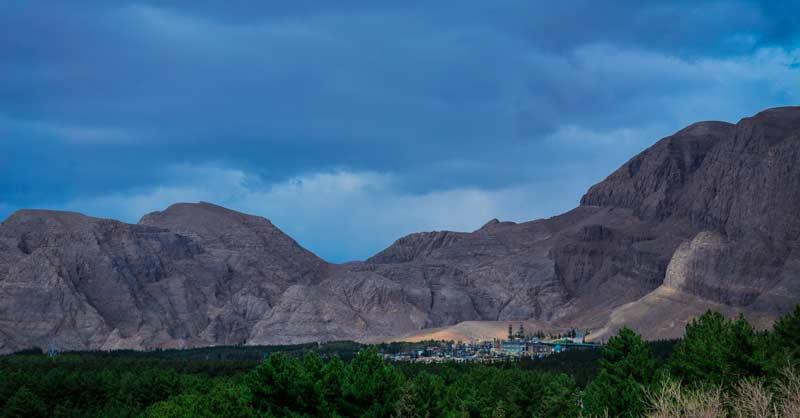 جنگل پردیسان قائم کرمان