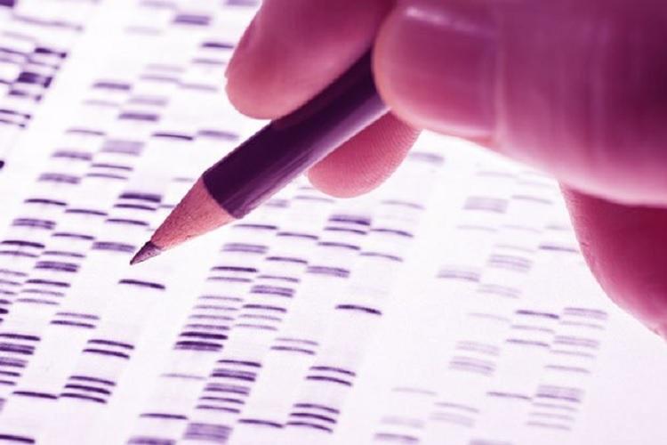 سرطان و ژنتیک