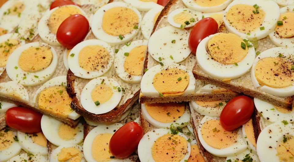 تخم مرغ برای عضله سازی