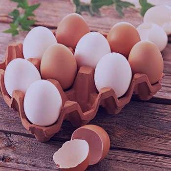 تخم مرغ کامل مصرف کنیم یا سفیده تخم مرغ؟