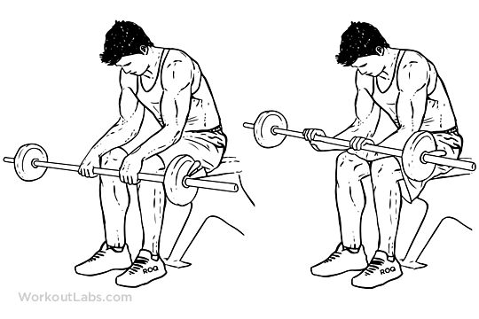 how-to-build-up-wrist-muscles-1