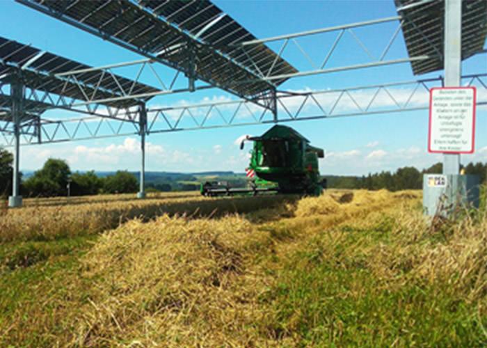 کشاورزی در مزارع دو منظوره تولید برق-